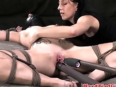Slave bedim sub restrained added to toyed